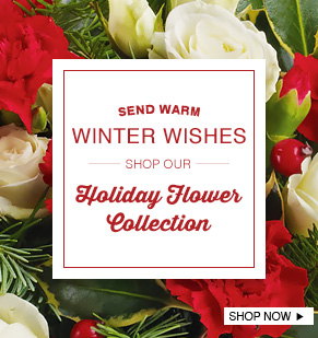 Send Warm Winter Wishes. Shop Our Holiday Flower Collection.