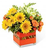 Flower Bouquets: Perfect Sun Bouquet